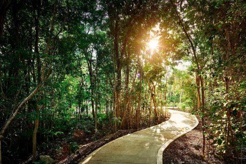 ciclovia-de-los-terrenos-de-senderos-poniente-en-ciudad-mayakoba